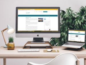 Website Development - Web Design